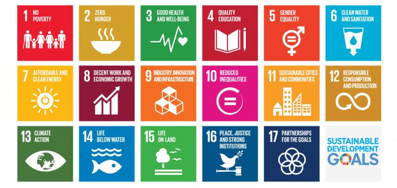 Duurzaamheidsdoelstellingen